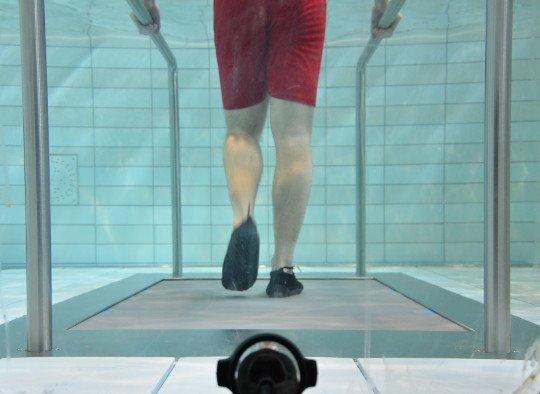 Best Treadmills For Home >> Underwater treadmill | Manufacturer aquatic treadmills | EWAC